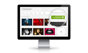 features-portfolio-massivehost copy